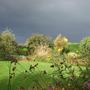 Looks_like_rain.