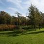 Lawn adjacent to Pond