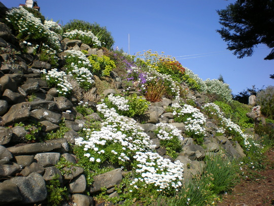 Rockery down to the beach.