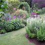 Cream Mignonette in the Garden