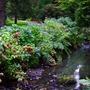 2008_0924N_Wales_B0466.jpg