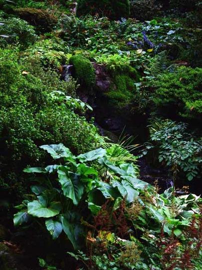 2008_0924N_Wales_B0477.jpg
