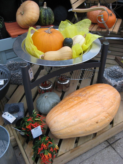 Pumpkin display Wisley