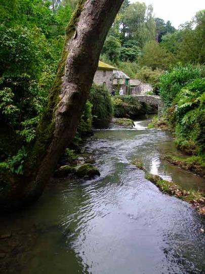 2008_0924N_Wales_B0473.jpg