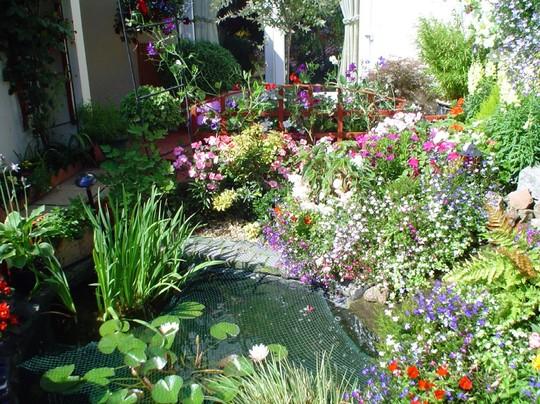 Gosport in Bloom Best Pond 2006 Silver Award