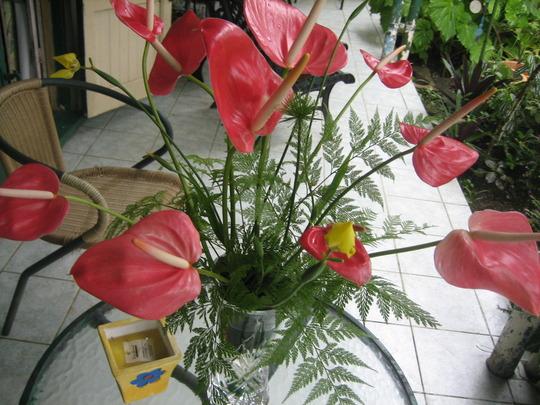Anthurium Floral Arrangement.