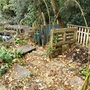 Compost bins with willow and pond