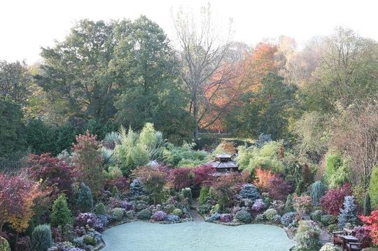 Frosty autumn - 1 November
