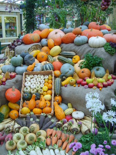 Heligan Harvest