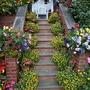 Steps_flowers