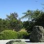 Balboa park: japanese rock garden