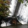 Fall_10_25_08_294