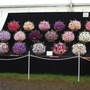 Trade stand at Southport Show