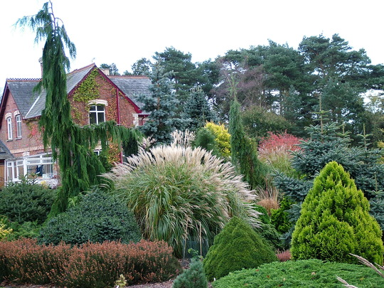 Foxhollow garden view