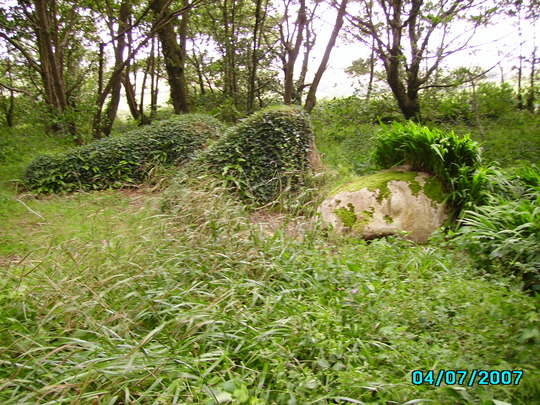 Lost Garden of Heligan