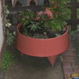 Container with various plants.