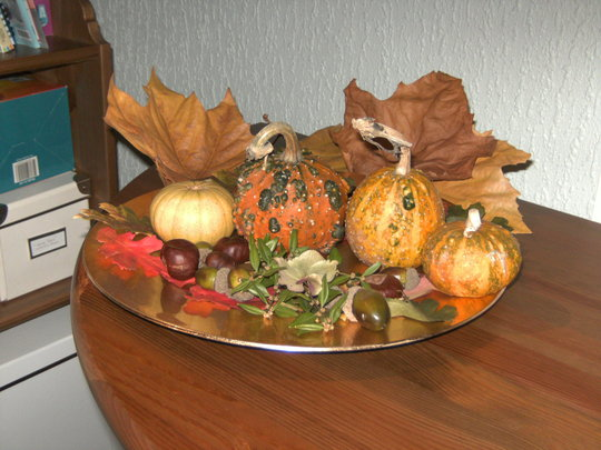 """""""Pumkins"""" more properly called Gourds."""