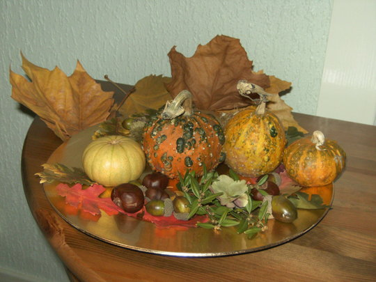 """""""Pumpkins"""" more properly called Gourds, view 2."""