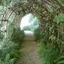 Queen Eleanors Garden The Great Hall Winchester