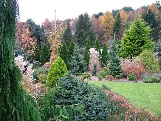 Foxhollow garden view