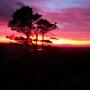 Sun_set_071