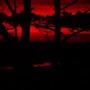 Sun_set_075