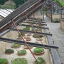 The Alpine Cold Frames, Royal Botanic garden, Edinburgh.