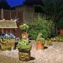 Night Time in Our Garden