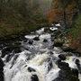 Falls of Braan, The Hermitage, Dunkeld, Perthshire, Scotland.