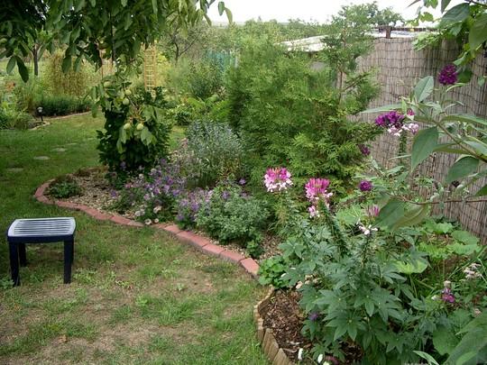 Summer 2007 back garden