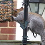 Pinching the bird seed