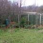 Garden record 2