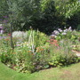Another view of the borders in the 'Hidden Garden'
