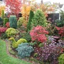 Side border autumn colours