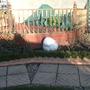 Garden_06_February_2008_014.jpg