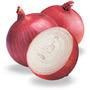 love onions