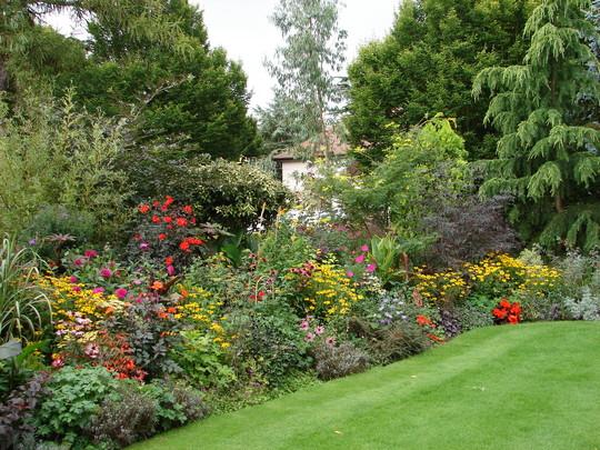 wolfson gardens