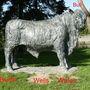 Bull_sept_08