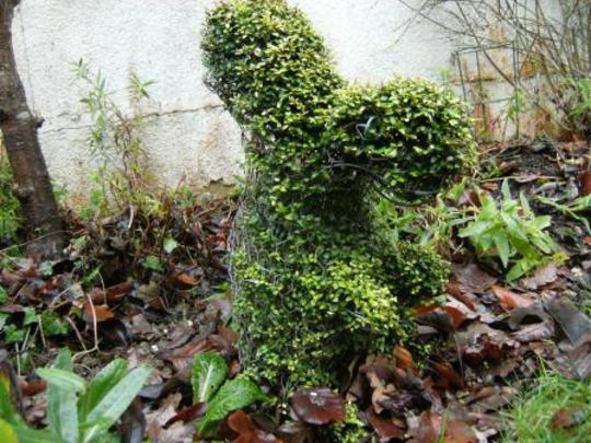 topiary squirrel
