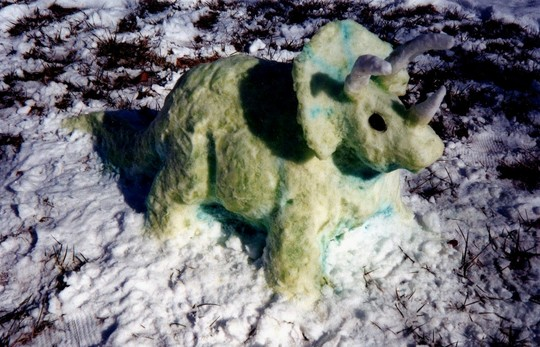 Our Triceratops