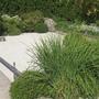 guelph zen garden