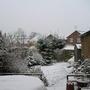 My Garden 2005