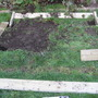 vegetable plot 1a