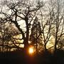 Sun_setting_over_Hanworth_261208_1.jpg