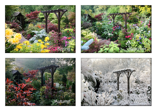 pergola through the seasons