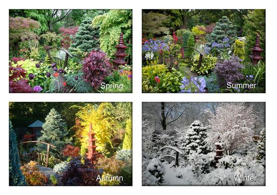 lower garden through the four seasons