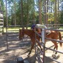 Me_upon_my_horse._008