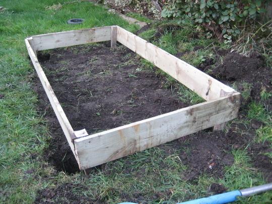 1st veggie plot