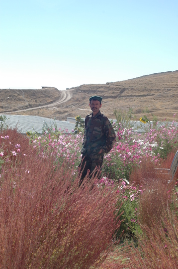 Hope and preservation of life.     http://defiantgardens.com/category/afghanistan/