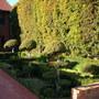 An English Garden in La Jolla, San Diego, CA???